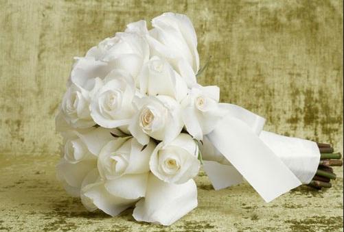 Tặng em hoa hồng trắng